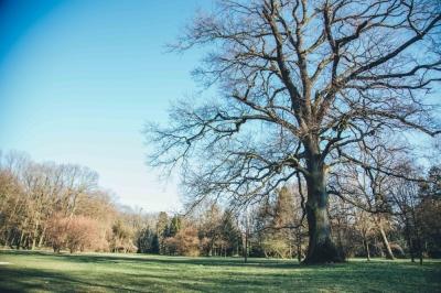 FOTOSPACER: Parki po zmianach