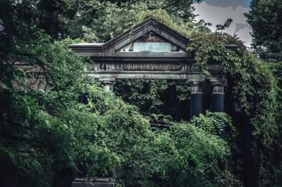 Zabytkowy Cmentarz Żydowski [FOTOSPACER]